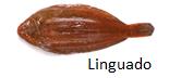 linguado